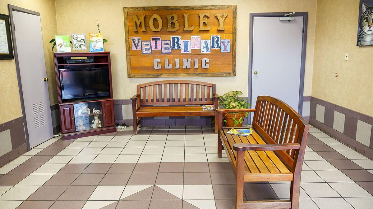 Mobley-Clinc.jpg