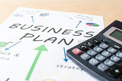 Create veterinary business plan